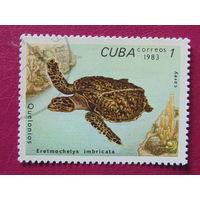 Куба 1983 г. Фауна.