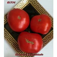 Семена томата Dwarf Waratah