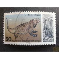 Берлин 1977 ископаемая фауна Михель-1,2 евро гаш. концевая марка серии