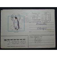 1983 пингвин прошло почту