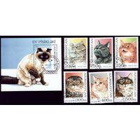 Блок и 6 марок 1995 год Азербайджан Коты 262-267 бл.18