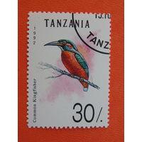Танзания 1992г. Птицы.