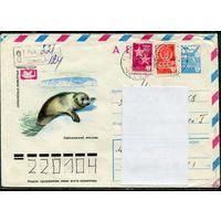 Фауна. Байкальский тюлень. Авиа. Заказное. 1978