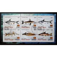 Восточный Тимор 2001  г. Сомы. Рыбы. Фауна, полная серия + Блок #0081-Ф1