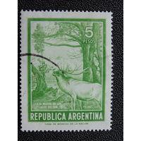 Аргентина. Фауна.