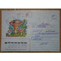Беларусь конверт рыжик Заказное франкировальный машинный штемпель суда