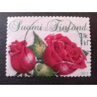 Финляндия 2013 розы