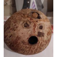 Кокосовый орех. Для декора или поделок.