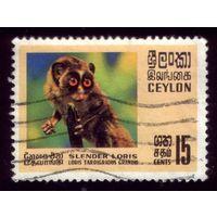 1 марка 1970 год Шри-Ланка Обезьян 396