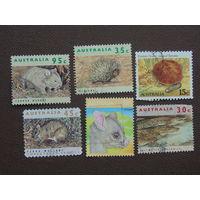 Австралия. 1992г. Фауна.
