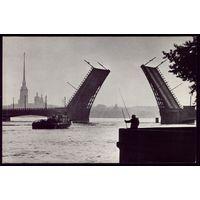 Дворцовый мост Рыбак