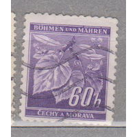 Германия рейх  Богемия и Моравия Местные мотивы 1941 г флора  лот 5    3