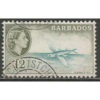 Барбадос. Королева Елизавета II. Летающая рыба. 1953г. Mi#210.