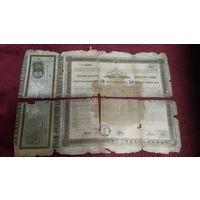 Сербия. Государственный заем. Облигация на предъявителя 10 динаров золотом 1888 года.Редкая фискальная марка 7 крон  погашена в Кракове
