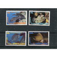 Нидерландские Антиллы. Морская фауна, рыбы