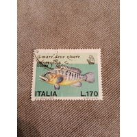 Италия 1978. Рыбы. Epinephelus Guara