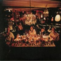 THE CARDIGANS – Long Gone Before Daylight // 2LP new