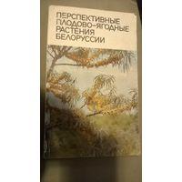 Перспективные плодово-ягодные растения Белоруссии