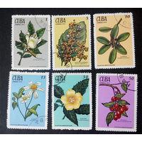 Куба 1970 г. Цветы. Флора, полная серия из 6 марок #0209-Ф1P3