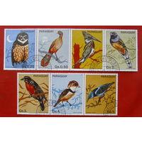 Парагвай. Птицы. ( 7 марок ) 1983 года.