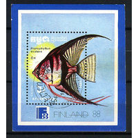 1988 Камбоджа. Аквариумные рыбки