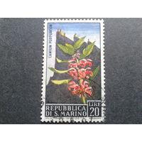 Сан-Марино 1967 цветы