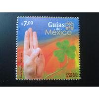 Мексика 2010 Скауты, рука
