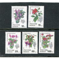 Россия 1993. Растения