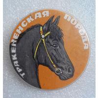 Значок. Лошади. Тракененская порода #0145