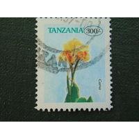Танзания. Флора.