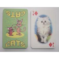Карты игральные. Котята. КЦП.
