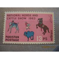 Пакистан. ДОМАШНИЕ  ЖИВОТНЫЕ.  1963г.