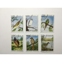 Куба 1975. Птицы. Полная серия