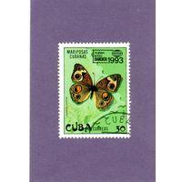 Куба.Ми-3702.Животный мир.Бабочка.Международная филателистическая выставка. Бангкок.1993.