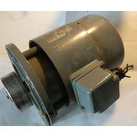 Электродвигатель Елпром- Тетевен,АО-021,370W, 380/220V, 2750 оборотов/мин