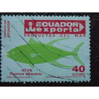 Эквадор 1986г.  Морская фауна.