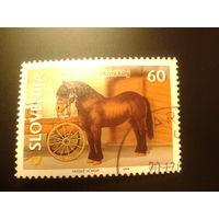 Словения 1999г. Конь