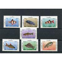 Афганистан. Рыбы