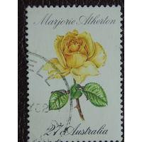 Австралия 1982г. Флора