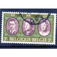 Бельгия. Ми-1366. Бенилюкс.Совместный выпуск с Люксембургом и Нидерландами. 1964.
