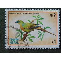 Непал 1992г. Птицы.