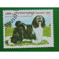 Камбоджа 1999г. Фауна.