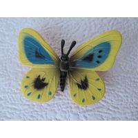Бабочка жёлтая