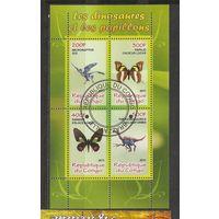Я Конго 2011 Бабочки Динозавры