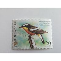 Сингапур 2007. Птицы