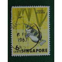 Сингапур 1967г. Рыбы.