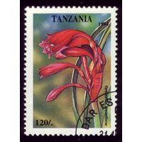 1 марка 1994 год Танзания Цветок 1882