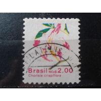 Бразилия 1989 Стандарт, цветы 2,00