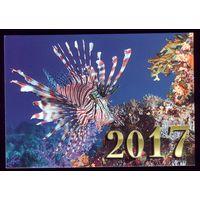 1 календарик 2017 год Аквариумные рыбки