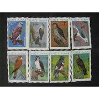 Вьетнам 1982 Хищные птицы полная серия